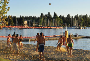 beach-volleyball-inset